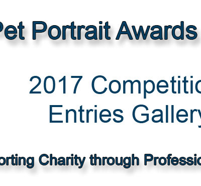Pet Portrait Awards Gallery